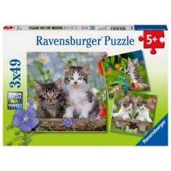 Puzzle 3 X 49 Pz: Gatitos atigrados